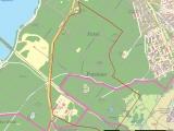 Potsdam: Drei Bombenfunde (750 Kg) im Waldgebiet bei Nuthetal u. Michendorf
