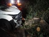 Beetzsee - Schwerverletzter bei Unfall auf L 98 nahe Marzahne/Radewege